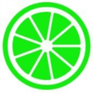 LIMESHOST.COM